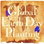 Global Earth Day Planting
