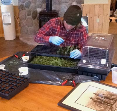 Jake Milarch Works with Cuttings