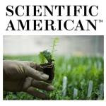 scientific-american-story