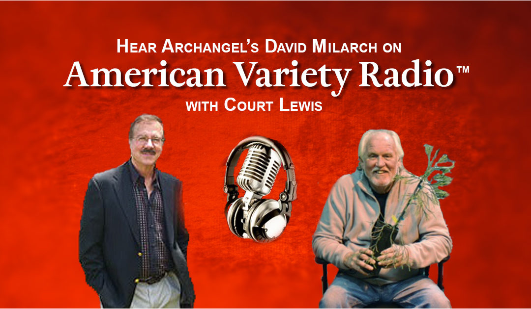 Archangel on American Variety Radio