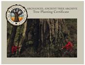Tree Planting Certificate