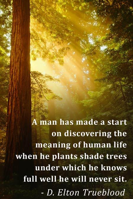 D. Elton Trueblood quote
