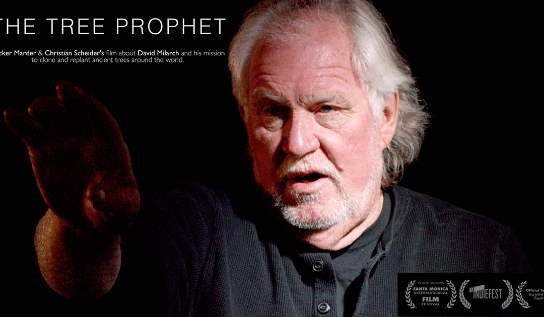 The Tree Prophet Film Premieres