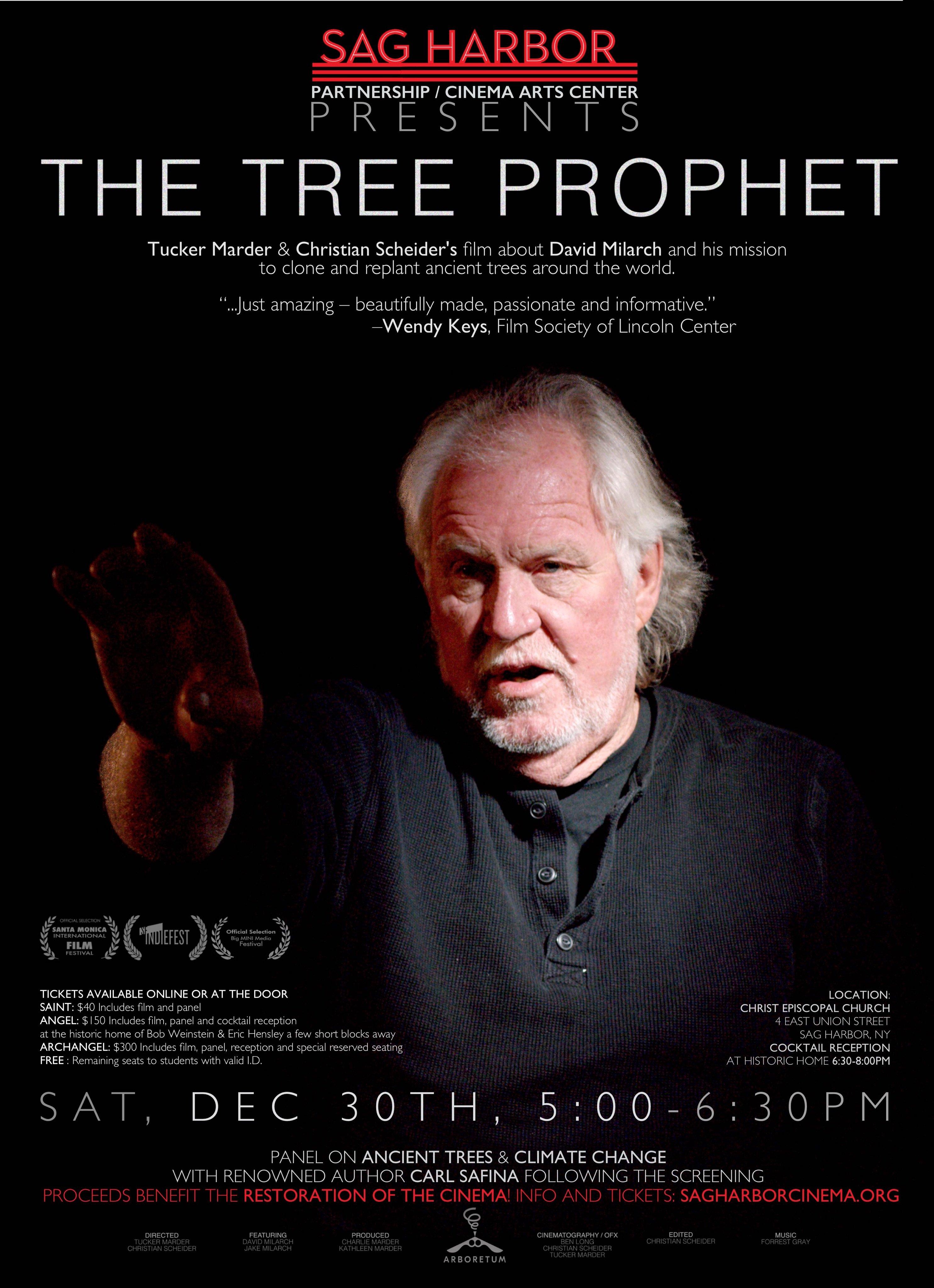 The Tree Prophet Film Premieres   Archangel Ancient Tree Archive