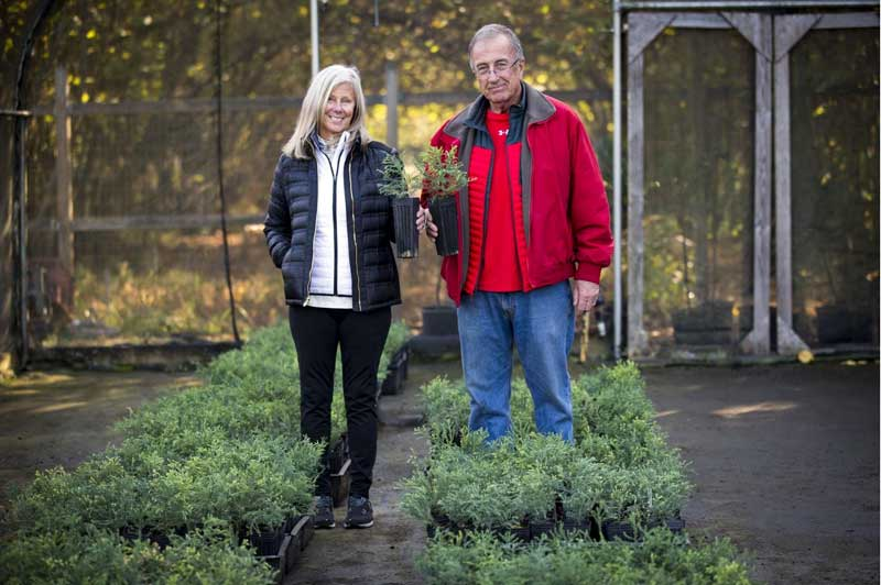 Linda and Don Smith Deliver Saplings