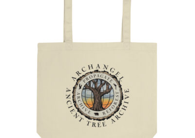 eco-tote-bag-oyster-5fdecd9b77a9c.jpg